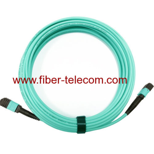 MPO Patch Cable 24 fibers Multimode OM3