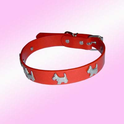 trendy dog collars