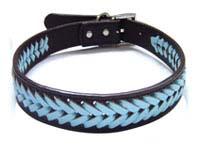 cools pets collars
