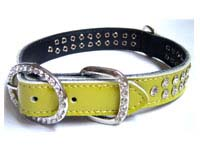 studded dogs collars