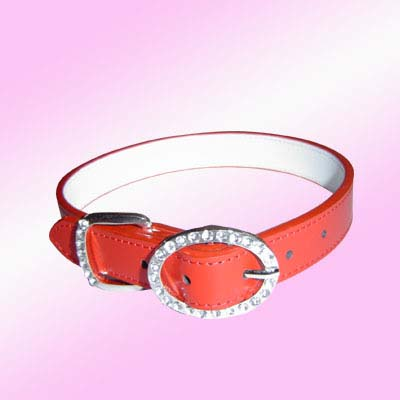 rhinestones dog collars