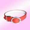 rhinestone Dog Collar