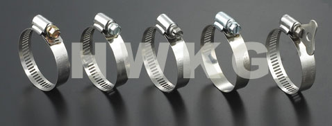 Worm Drive Hose Clamp-Perforation DM13
