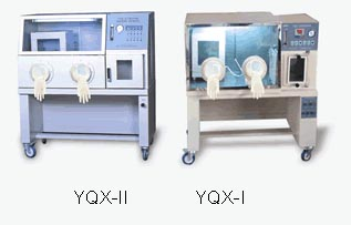 Anaerobic Incubators