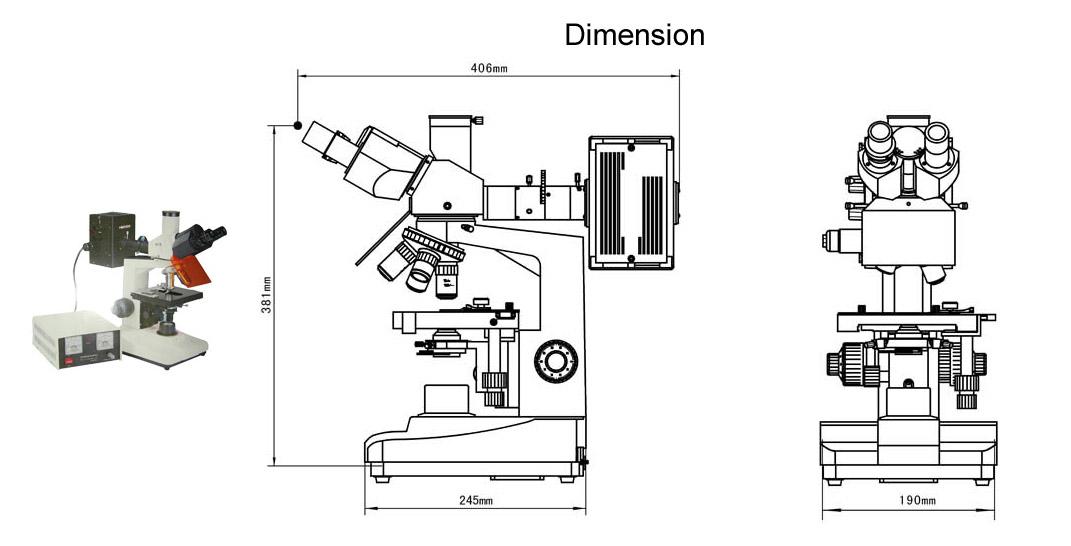 Flourescence Microscope