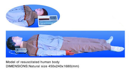 resuscitated human body