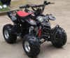 Newest Mini Kids Quad