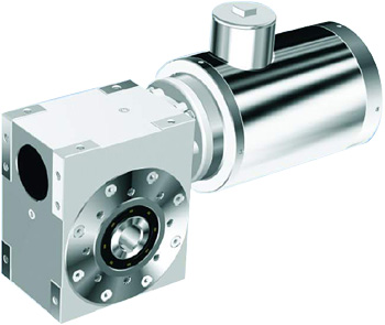 Stainless Steel Worm-gear Reducer