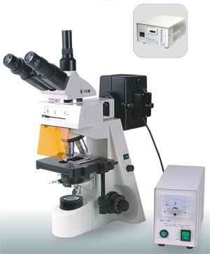 Epi-fluorescent microscope