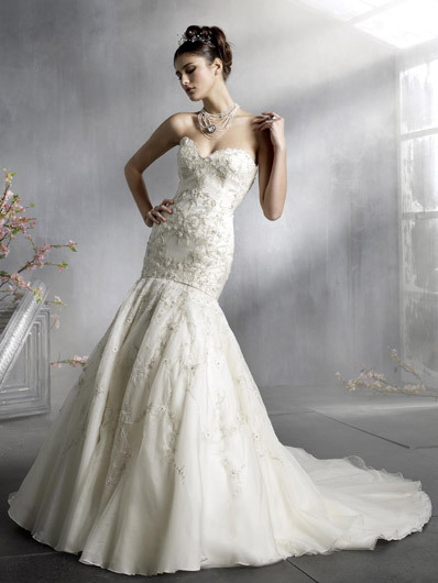 Dream Wedding Dress Designer