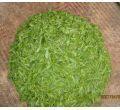 Green Tea Extract Powder Camellia sinensis Extract Powder