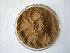 Pueraria/Kudzu Powder Extract