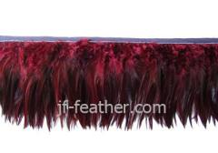 Pheasant Feather Trimming