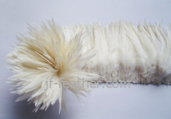 china Cock Feather