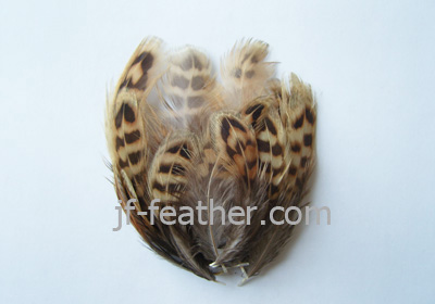 Feather Christmas Decoration