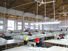 sewing plant