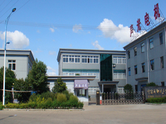 Ningbo Shengguang Motor Co,. Ltd.