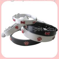 dog show collar