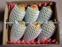 Fruit Foam Nets