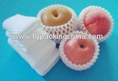 Double Fruit Foam Net