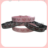 pet safe training collar