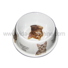 melamine cat bowl