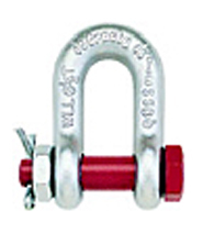Bolt type shackle