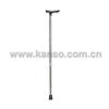 cane crutch