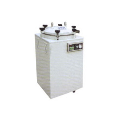 Cylindrical steam autoclave