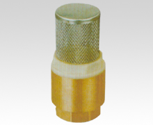 Check Valve Of Stainless Steel
