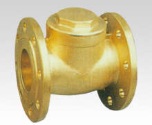 Brass flange check valve