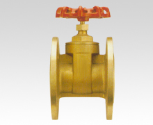Project special-purpose gate valve