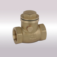 high quality Angle Check Valves