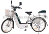 250W Electric Bicycle CE