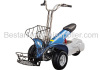 750W Electric Golf Cart