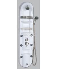 Curved Offset Shower Panel