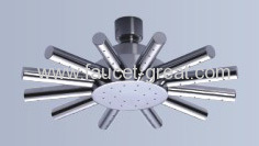 Showerhead with ball-joint