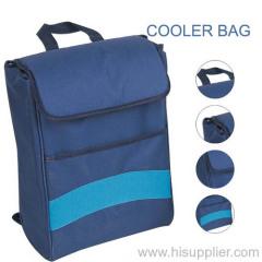 Ice Picnic Bags