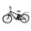 Steel Bike