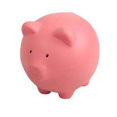 pig toy