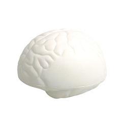 cerebrum toy