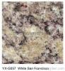 Granite Floor Tile