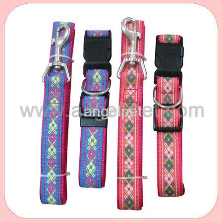 nylon collar and leads