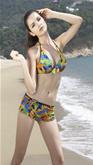 Color Pallette Bikini