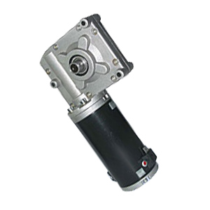 Worm Gear Motor 73zyj01 Manufacturer From China Ningbo