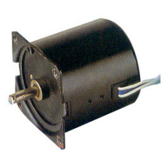 Synchronous Motor for Mechanical