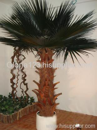 Preserved palm