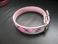 cat Burberry collar