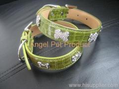 dog's PU collar
