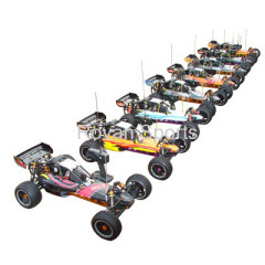 radio controlled RC Buggy